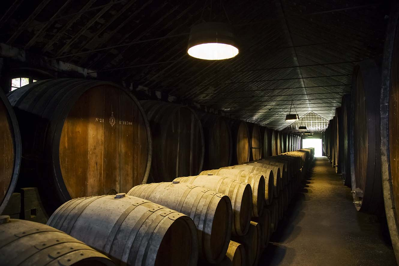 Classic Alentejo Wine Tasting Flavours