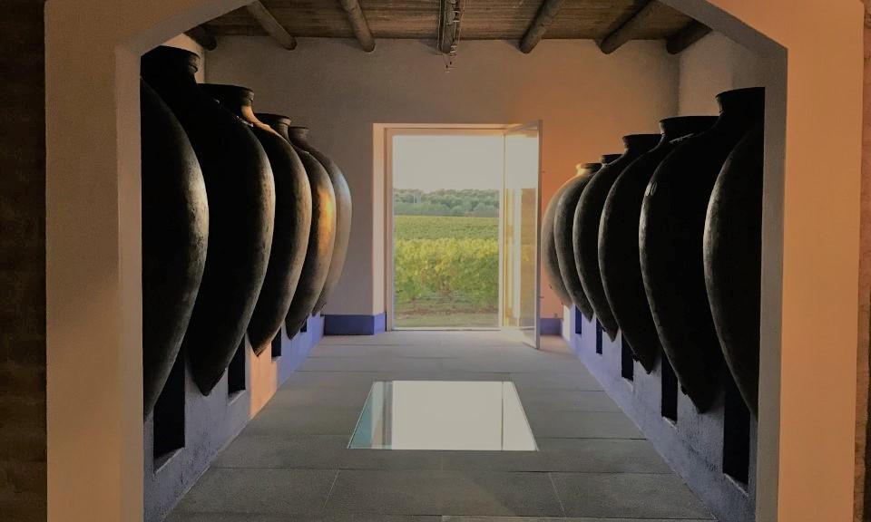 Lisbon wine tour Atlantic breezes